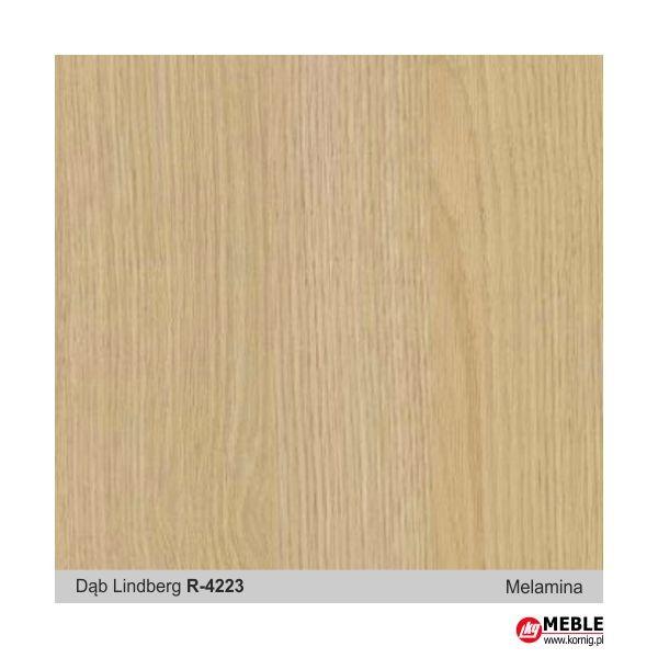 Dąb Lindberg R-4223