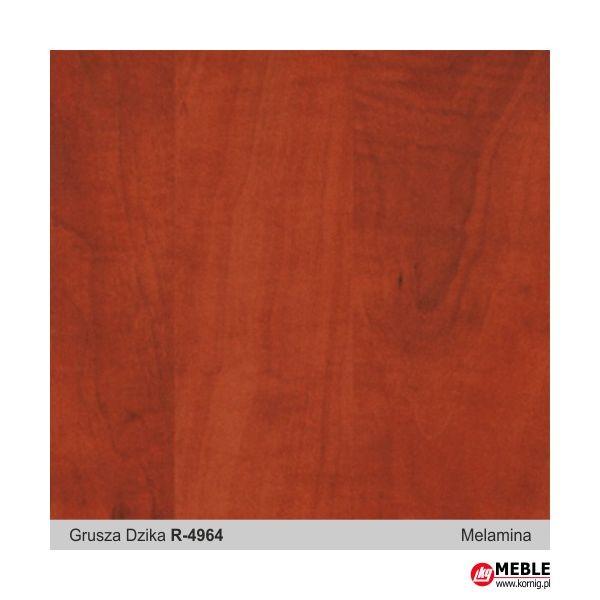 Płyta melamina R-4964